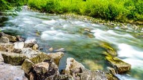 在三角叶杨露营地的Cayoosh小河沿Duffy湖路 库存照片