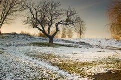 在上个月冬天 免版税图库摄影
