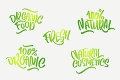 在上写字集合为在绿色的自然产品 手写 免版税库存照片