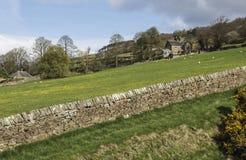 在上院上的石墙Pateley桥梁的,北约克郡,英国,英国 免版税图库摄影