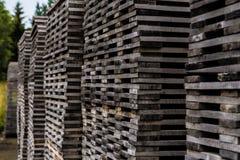 在上面堆积的堆腐朽的木材 免版税库存照片