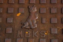 在下水道的猫 古晋,沙捞越马来西亚 免版税库存图片