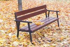 在下落的叶子中的庭院长凳 库存图片