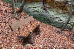 在下落的叶子盖的长凳 库存照片