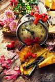 在下落的叶子背景的时钟  图库摄影