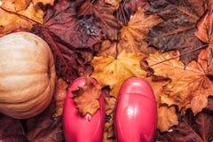 在下落的叶子背景的桃红色gumboots 库存照片