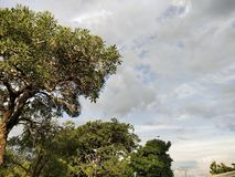 在下雨以后的天空 免版税库存图片