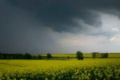 在下雨的黑暗的天空在春天前 免版税库存照片