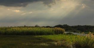 在下雨以后的土地 免版税库存照片