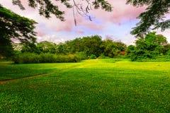 在下面颜色云彩之下的美丽的草坪 免版税库存图片