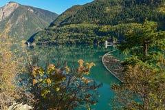 在不列颠哥伦比亚省采伐在Carpenter湖的景气和秋天叶子 免版税库存照片