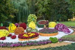 在不同的果子形状的花床与五颜六色的菊花的 Parkland在基辅,乌克兰 库存图片
