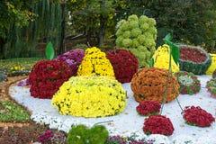 在不同的果子形状的花床与五颜六色的菊花的 Parkland在基辅,乌克兰 免版税图库摄影