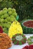 在不同的果子形状的花床与五颜六色的菊花的 Parkland在基辅,乌克兰 免版税库存图片