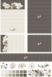 在不同的ecru木炭婚礼邀请集合的木兰花卉赃物 免版税库存图片
