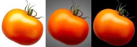在不同隔绝的小组红色蕃茄 免版税库存图片