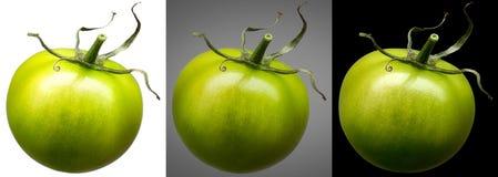 在不同隔绝的小组绿色蕃茄 免版税图库摄影