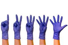 在不同颜色isolat橡胶手套的男性或女性手  免版税库存图片