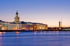在不眠夜wiev期间的离婚的宫殿桥梁在Kuntskamera,圣彼德堡,俄罗斯 2010年7月3日 库存图片