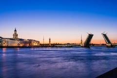 在不眠夜wiev期间的离婚的宫殿桥梁在Kuntskamera,圣彼德堡,俄罗斯 2010年7月3日 图库摄影