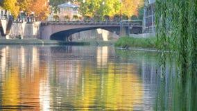 在不适的河的秋天颜色 股票视频