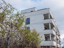在不高公寓前面的被缠结的灌木 库存照片