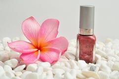 在与一株桃红色赤素馨花的白色小卵石指甲油 免版税库存照片