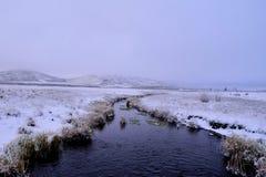 在与小河的冬天打开领域 免版税库存照片