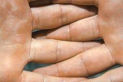 在与手指的战斗交错的人的白种人长毛的胳膊 免版税库存照片