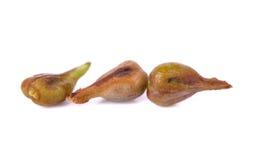 在与景深的白色隔绝的葡萄种子 免版税库存图片