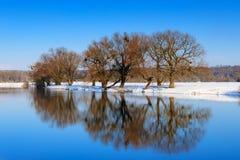 在与树的反射的冬天浇灌河的表面 33c 1月横向俄国温度ural冬天 免版税库存图片