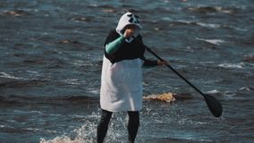 在与桨的烽火台划船附近男服在冲浪板乘驾的熊猫衣服 股票录像