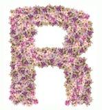 在与百日菊属花ABC概念类型的A字母表上写字作为商标 免版税库存图片