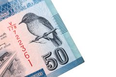 在与裁减路线的白色背景隔绝的100,20,50卢比斯里兰卡的钞票  图库摄影
