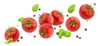 在与裁减路线,飞行的新鲜蔬菜成份的白色背景隔绝的落的蕃茄沙拉 免版税图库摄影