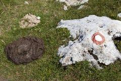 在与路标的岩石附近威胁在山道路的粪 免版税库存图片