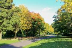 在与通过进来在一个农村设置的路的秋天停放 库存照片