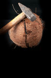 在与锤子的一半打破的椰子 图库摄影