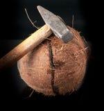 在与锤子的一半打破的椰子 免版税图库摄影