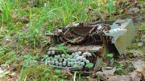 在丛林的老打字机 库存图片