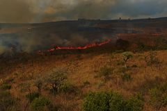 在东南非的小山的灼烧的领域 免版税库存照片