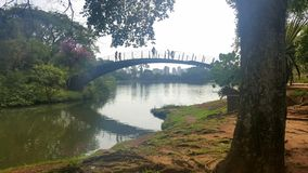 在东方区域的桥梁在Ibirapuera 库存照片