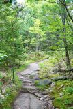 在东方的供徒步旅行的小道 免版税库存照片