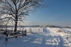 在东部Grinstead的冬天场面 免版税库存照片