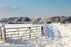 在东部Grinstead的冬天场面 图库摄影