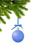 在丝带的蓝色闪烁圣诞节装饰球在绿色树枝 免版税库存图片