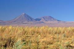 在两个巨型的火山前面的宜人的色的草地我 免版税库存图片