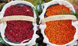 在两个篮子的秋天莓果 免版税库存图片