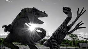 在两恐龙之间的争执 免版税图库摄影