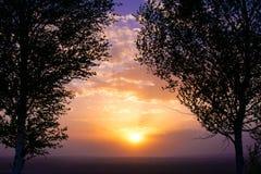 在两桦树之间的日落 库存照片